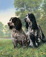 Nigel Hemming COCKER TWO Springer Spaniels, Art Canine Ltd Edition  #1
