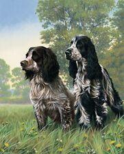 More details for nigel hemming cocker two springer spaniels, art canine ltd edition  #1
