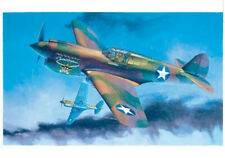 "BRAND NEW GMP LIMITED EDITION 1:35 scale CURTISS P-40E WARHAWK ""TEXAS LONGHORN"""