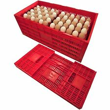 RITE FARM PRODUCTS EGG TRAY CARTON TRANSPORT CRATE CHICKEN SHIPPING POULTRY CASE