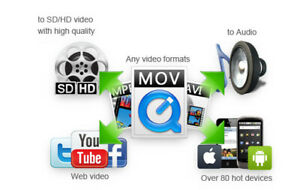 Any Video Converter Professional 2020 Multilingual Fast Delivery