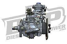 DAP Stock Reman VE Pump (Intercooled) - 91.5-93 Dodge 5.9L Cummins Intercooled