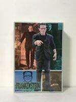 Horizon Universal Studio Monsters Frankenstein Vinyl Model Kit by Steve Wong