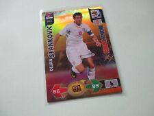 Panini Adrenalyn XL World Cup 2010 #329 Dejan Stankovic Champion Card MINT