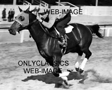 1938 RACING HORSE SEABISCUIT IN FULL STRIDE PIMLICO MATCH RACE ACTION 5X7 PHOTO