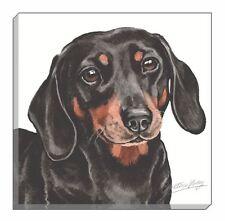 Evans Lichfield waggydogz Dachshund SALCHICHAS Cachorro Negro Imagen Lienzo 40cm