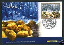 Italia Repubblica 2015 : Tartufo - Cartolina Filatelica Ufficiale Poste Italiane