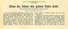 Rennpferde Pferdehaltung Ställe K. von Tepper-Laski Lang-Puchdorf Graditz...1904