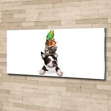 Glas-Bild Wandbilder Druck auf Glas 125x50 Deko Tiere Gruppe von Tieren