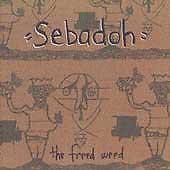 Sebadoh - Weed Forestin' ORIGINAL PRESSING 1990 VINYL Lou Barlow of Dinosaur Jr.