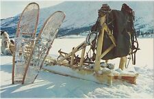 Vintage Alaskan Trappers Gear Husky Dog Team Ak Alaska Postcard Sled Traps Tent