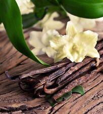 Vanilla & Sandalwood Perfume Oil In Rollerball 5ml Natural Perfume