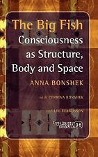 The Big Fish: Consciousness as Structure, Body and Space. (Consciousness, Litera