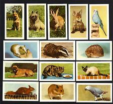 CIGARETTE/TRADE/CARDS. Hornimans Tea. PETS. (1960). (Complete Set of 48).