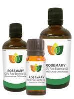 Rosemary Pure Essential Oil Natural Rosmarinus Officinalis Aromatherapy