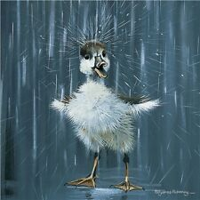 Very Cute duckling having a splash card suitable for all occasions