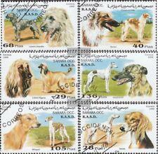 Sáhara usado 1996 perros