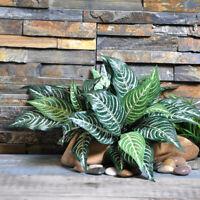 1Pc Zebra Leaf Artificial Plants Fake Green Leaf Tree Plant Home Garden Decor