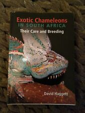 Exotic Chameleons In South Africa Their Care And Breeding