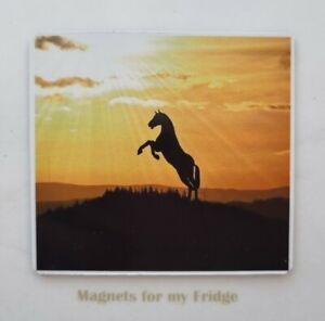 REARING HORSE AT SUNRISE / SUNSET PHOTO FRIDGE MAGNET - M21 F