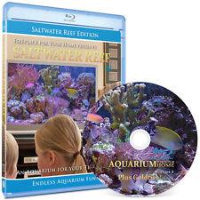 Aquarium Blu-ray: Saltwater Reef Edition Plus Goldfish #8 - 1080 HD