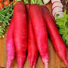 Radish Seeds Red Giant Ukraine Heirloom Vegetable Seeds
