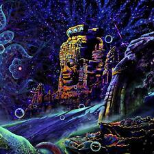 Trippy Wall Art, UV Tapestry Psychedelic, Mushroom Tapestry, Blacklight Artwork