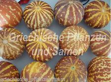 🔥 🍉TIGGER Melone  knall gelb/rot 6 Samen RAR aus Armenien für Kübel auf Balkon