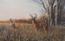 Jim Hansel Breaking Cover Deer Buck Print  12 x 7.75