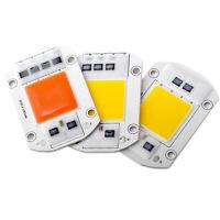 Smart IC Driver LED Chip 20W 30W 50W High Power 110V 220V Bulb Spotlight Lamp RD
