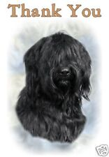 Briard Thank You Card By Starprint