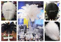 Wholesale 10-100pcs Natural Ostrich Feathers 12-14inch / 30-35cm White / Black