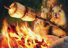 Squirrels Toasting Marshmallow Funny Anniversary Card by Avanti Press photo