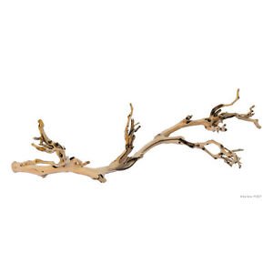 Exo Terra Forest Branch Small Medium Large