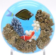 MAGNIFICIENT Large GORDON SMITH Fish and Coral Art Glass AQUARIUM Paperweight