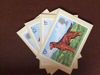 F1f postcard unused x 4 royal mail british dogs peter barrett cards