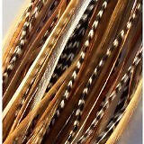 Feather Hair Extension 4-6 Beautiful Natural Beige & Brown Feathers for Hair Ext
