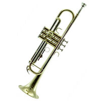 Top Quality Bb Gold Plated Brass Trumpet w Strong LightweightCase 7C Mouthpiece