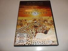 DVD  Serengeti - Circle of Life