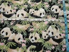 Adorable Panda Bears On Bamboo Shoots-Elizabeth Studios-Fat Quarter-Panda Bears