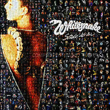 400 foto de matriz mosaico cartel Var Colores de David Coverdale & Whitesnake no 3