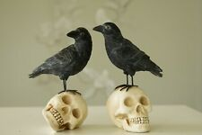 """Mark Roberts Crow on Skull 10"""" Set of Two"""
