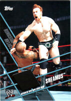WWE Sheamus Topps 2011 Ringside Relics Event Used Ring Skirt Relic Card Blk DWC