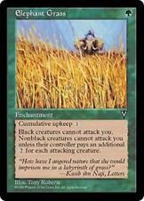 ELEPHANT GRASS Visions MTG Green Enchantment Unc