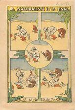 Caricature Expérience Scientifique Naturaliste Singe Monkey Scientific  1933