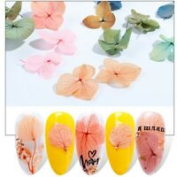 Nail Dried Flower Nail Art Decor for 3D Manicure Polish Summer Preserved Floral