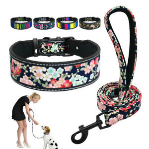 Wide Dog Collar Soft Padded Pet Dog Collar and Lead set for Medium Large Dogs
