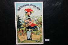 AK Leporello Gruss aus Lützenhardt im Schwarzwald  beschrieben         262