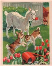 GOATS MAKE MISCHIEF, EAT TULIPS by George Trimmer, vintage print authentic 1939