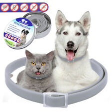 4pcs Flea and Tick Collar for Dogs Cat Over 18lbs Insect Killer Prevent 8 Months